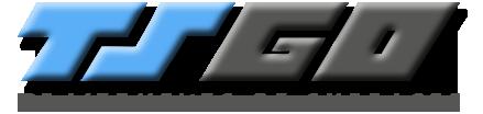 TS GO, adhérent du GE Mer & Vie - Groupement Mer & Vie spécialiste du temps partagé et des compétences mutualisées sur les secteurs de Saint Gilles Croix de Vie, Aizenay et la Roche-sur-Yon