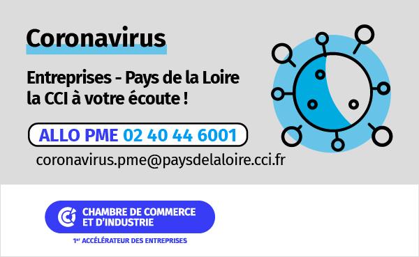 Coronavirus et entreprises : les dispositifs de la Région et de la CCI de Vendée